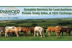 farm-ad-for-facebook-copy